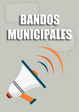 Bandos municipales