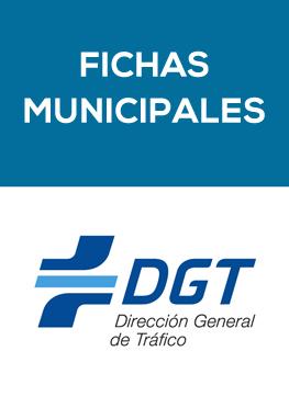 Fichas municipales de la DGT