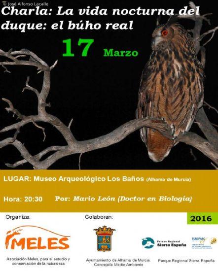 Esta tarde, charla sobre el búho real en el Museo Arqueológico