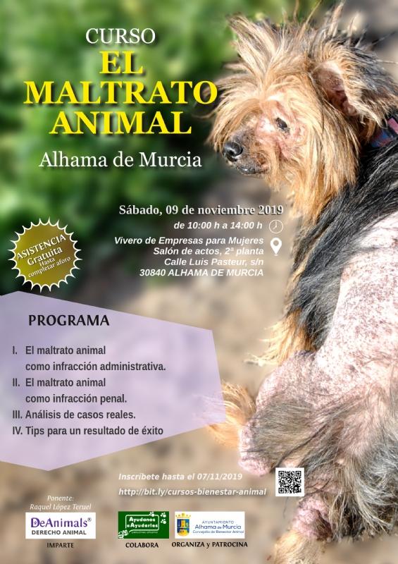 Cursos de Bienestar Animal: 'El maltrato animal' y 'Legislación aplicable a las colonias felinas'