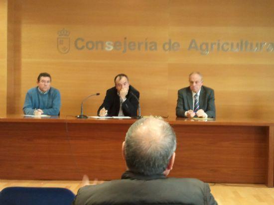 El Ayuntamiento de Alhama se une al resto de municipios de la región para luchar contra el picudo rojo