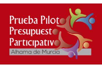 Convocatoria de la Junta Local de Participación Ciudadana
