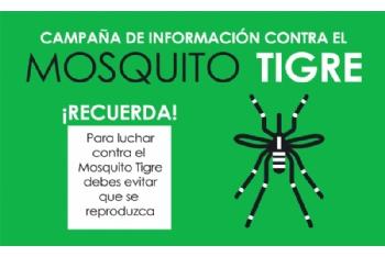 Vuelve el calor, vuelve el mosquito tigre. Consulta aquí las recomendaciones