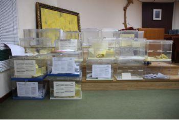 Más de 1.400 vecinos votan en los primeros presupuestos participativos de Alhama