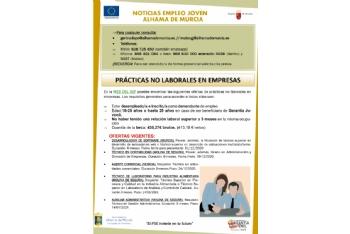 Boletín semanal del centro de empleo para jóvenes (16-12-2020)