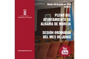 Convocatoria de Pleno: sesión ordinaria » martes 30 de junio de 2020