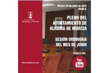 Convocatoria de Pleno: sesión ordinaria » martes 29 de junio de 2021