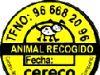 Durante el año 2006 se han recogido en el municipio 98 perros y 9 gatos abandonados