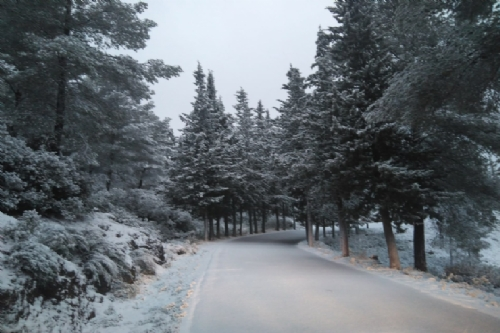 Nieve en Alhama y Sierra Espuña