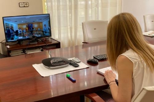 Videoconferencia con el presidente regional
